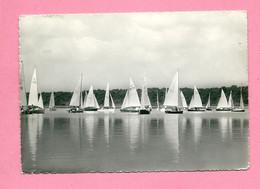 C.P. Virelles =   Lac  :  Les  Régates - Chimay