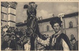 SIENA-IL PALIO-CAVALLO E BARBARESCO DI UNA CONTRADA-CARTOLINA VIAGGIATA IL 11-1-1939 - Siena