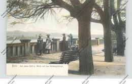 5300 BONN, Alter Zoll, Blick Auf Das Siebengebirge, 1904, Belebte Szene, Handcoloriert, Rück. Leicht Abschürfung - Bonn