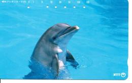 Dauphin Dolphine Poisson Télécarte Phonecard Japon (D 1094) - Dolphins
