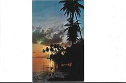 TAHITI - Magnifique  Coucher De Soleil Tiva Tahaa - Tahiti