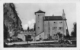 La Porte Du Scex - St Maurice - Troupeau De Vaches - Saint - VS Valais