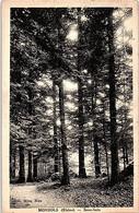 69 - MONSOLS -- Sous Bois - Altri Comuni