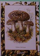 Petit Calendrier De Poche 2009 Champignon Hydne Imbrique - Klein Formaat: 2001-...