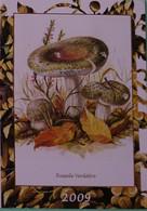 Petit Calendrier De Poche 2009 Champignon Russule Verdâtre - Klein Formaat: 2001-...