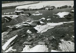 20044 T.A.A.F Carte-Photo De La Base Dumont D'Urville En Février 1968  TB - Briefe U. Dokumente