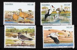 Umm - Birds Watering 1999 - Namibia (1990- ...)