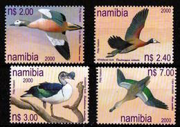 Umm - Ducks 2000 - Namibia (1990- ...)
