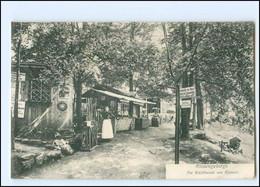 XX11698/ Riesengebirge Waldbaude Am Kynast AK 1907 Schlesien - Schlesien