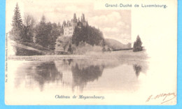 Château De Meysembourg-Larochette (GD De Luxembourg)-+/-1900-edit.Charles Bernhoeit, Luxembourg - Larochette