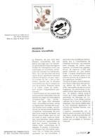 DOCUMENT FDC 1992 FLORE DES ZONES HUMIDES - ROSSOLIS - Documents Of Postal Services
