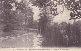 Isère : SAINT BONNET De MURE  : Le Lac Et Le Vieux Saule : 1925 - Other Municipalities