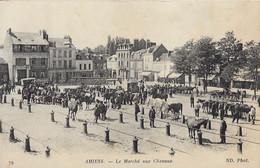 AMIENS - Le Marché Aux Chevaux - Amiens