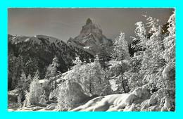 A900 / 165 Suisse Bei Zermatt Verschneite Lerchen An De Mattervispa - Zonder Classificatie
