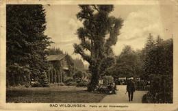 BAD WILDUNGEN, PARTIE AN DER HELENENQUELLE. ALEMANIA GERMANY DEUTSCHLAND - Sin Clasificación