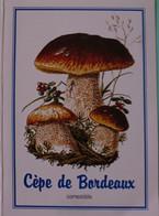 Petit Calendrier De Poche 2003 Champignon  Cèpe De Bordeaux  Pharmacie Roubaix - Klein Formaat: 2001-...