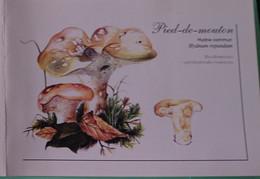 Petit Calendrier 2007 Champignon Pied De Mouton Hydne Commun - Format Carte Postale Double - Klein Formaat: 2001-...
