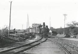 CPM - Collection BVA - Train En Gare De Portrieux - Saint-Quay-Portrieux