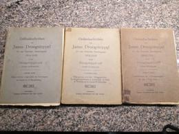 Gedenkschriften Van Janus Droogstoppel 3 Delen Uit Duitse Bezettingstijd Antwerpen Fort Van Baasrode Compleet - Guerre 1914-18