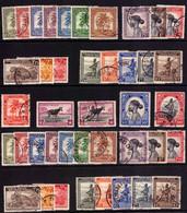 Congo 0228/267 (o) Palmiers Et Sujets Divers - 1923-44: Used