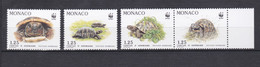 TIMBRES MONACO SERIE TORTUES N° 1805 AU 1808  **   PM - Unused Stamps