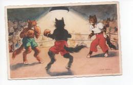Chats  Humanisées  -  Illustration  Signée  Jean  Paris  -    Boxeurs - Katten