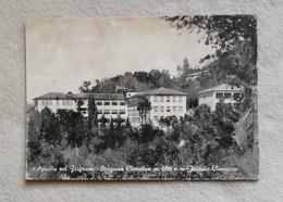 Cartolina Illustrata Pavullo Nel Frignano - Istituto Climatico, Viaggiata Per Bologna 1956 - Otras Ciudades