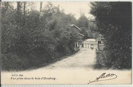 Vue Prise Dans Le Bois D'Houdeng (La Louvière) - D.V.D. N°5685 - 1906 - La Louvière