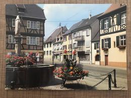 WINTZENHEIM Place De La Republique Fontaine Fleurie - Wintzenheim