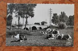 CHALON-SUR-SAÔNE (71) - PAYSAGE AU PONT PARON - Chalon Sur Saone