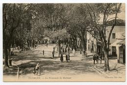 7/ CPA TLEMCEN  La Promenade Du Méchouar    ND Phot - Tlemcen