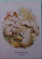 Petit Calendrier De Poche Humoristique 1996 Champignon Humanisé Pied De Mouton  Evian - Klein Formaat: 1991-00