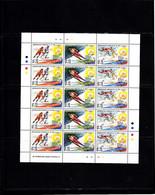 Olympics 1994 - Ice Hockey - COOK ISLANDS - Sheet MNH - Invierno 1994: Lillehammer