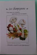 Petit Calendrier De Poche 1998 Champignon Amanite Vireuse - Klein Formaat: 1991-00