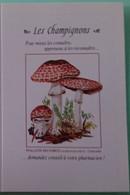 Petit Calendrier De Poche 1998 Champignon Psaliote Des Forêts - Klein Formaat: 1991-00