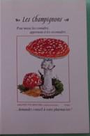 Petit Calendrier De Poche 1998 Champignon Amanite Tue Mouches - Klein Formaat: 1991-00