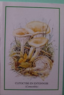 Petit Calendrier De Poche 1999 Champignon Clitocybe En Entonnoir - Klein Formaat: 1991-00