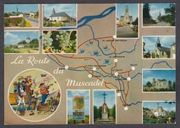 116849/ La Route Du Muscadet, Circuit Touristique Du Vignoble Nantais - Wijnbouw
