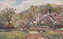 Illustrateur : TUCK Raphael : Hampshire - Série 11 : The Ford At Moyles Court Ringwood : OILETTE N° 7114 : 1906 : - Tuck, Raphael