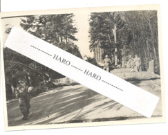 Photo ORIGINALE - Guerre 40/45 - Démineurs Dans Le Secteur De Bastogne Et Dégagement D'une Route - 1939-45