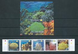 Barbados 2004 Coral.Fauna/Marine Life/Corals.Strip Of 5 Stamps & S/S. MNH - Barbados (1966-...)