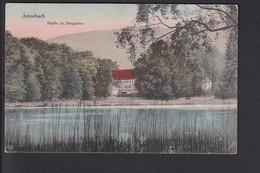 B54 /    Amorbach Seegarten 1918 - Amorbach
