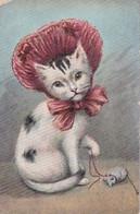 CHAT ET LA SOURIS        En Vente  5 Semaines - Gatos