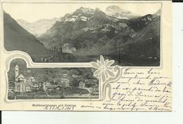 Suisse - Wolfenschiessen Mit Gebirge - Double Vues  - Canton De Nidwald - - NW Nidwalden