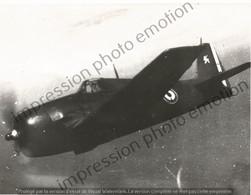 PHOTO AVION   GRUMMAN F6F HELLCAT   RETIRAGE REPRINT - Aviación