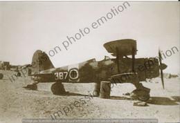 PHOTO AVION    AVION FIAT   RETIRAGE REPRINT - Aviación