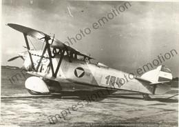 PHOTO AVION      Fiat CR.32 Autrichien 184  RETIRAGE REPRINT - Aviación
