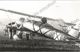 PHOTO AVION    Fiat CR-42 Hongrois   RETIRAGE REPRINT - Aviación
