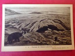 Mammouth époque Glacière - Storia