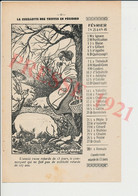 Cueillette Des Truffes Panier Récolte Cochon Truffier Truffe Au Nez Publicité 1921 Vêtement Battin Rue Carnot Brive241/2 - Unclassified